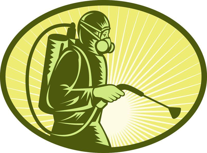 شركة مكافحة النمل الأبيض بمكة